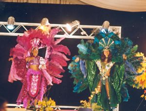 Original Brazil-Tropical costumes